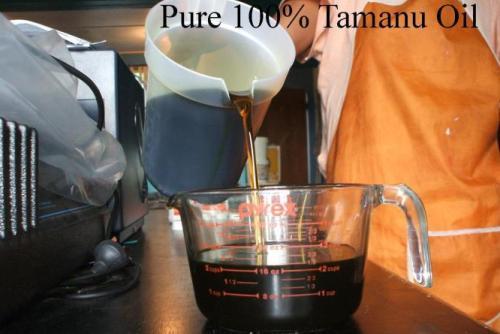 Tamanu Oil Australia : Benefits : Uses